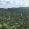 Abierto el plazo para solicitar ayudas forestales